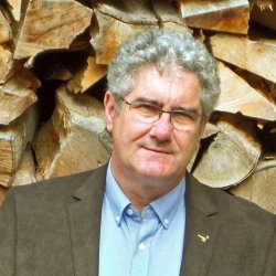 David Sims