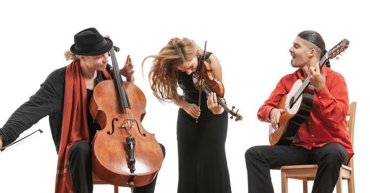 Wild Strings Trio