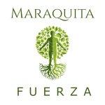 New single - Fuerza