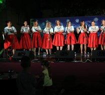 Singrlice live concert