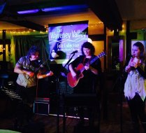 Waveney Valley Folk Collective 3rd Feb 2015