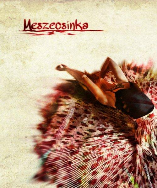 Album cover 2012 by Meszecsinka