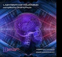 VA ~ Labyrinth Of Your Mind