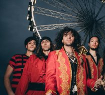 Tarantula. The Band