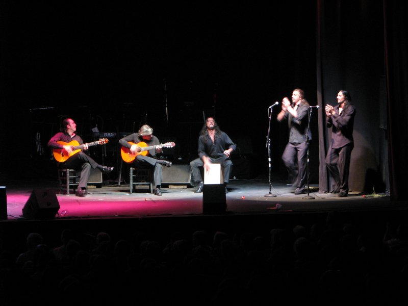 Spanish Flamenco Guitar Society