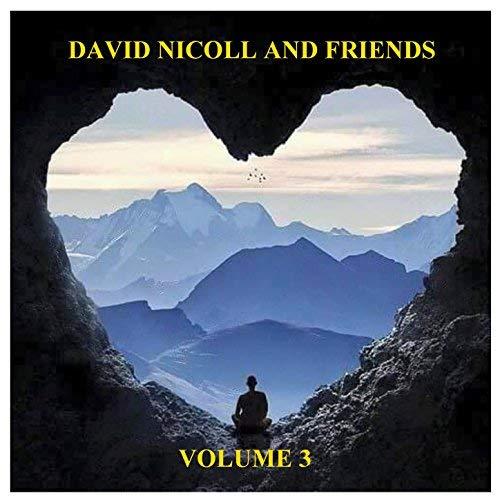 David Nicoll and friends Vol 3
